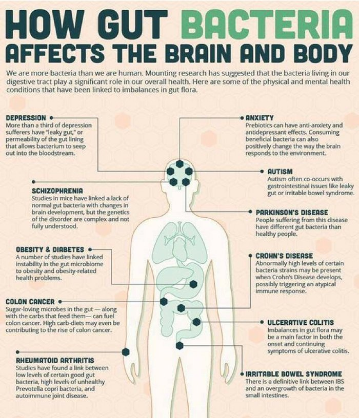 effect of bacteria to human body