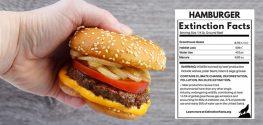 hamburger meat label