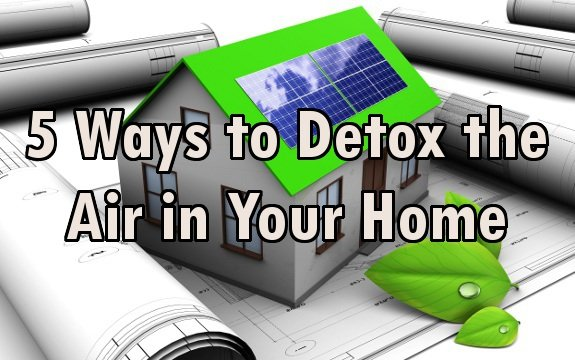 4 Ways To Naturally Purify The Air In Your Home With