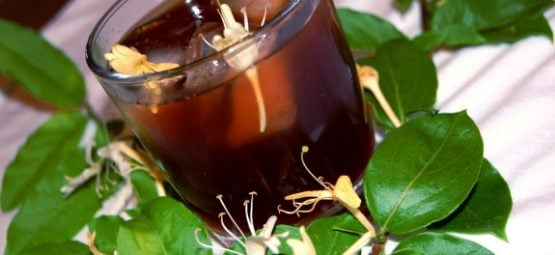 honeysuckle tea