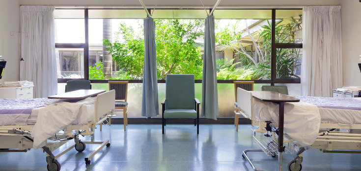 hospital_medical_room_plants_735_350