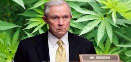 Jeff Sessions Confirmed as New Attorney General - What's Next for Marijuana?
