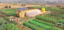 Think Outside the Box: 2-Acre Shipping-Container Farm Feeds 150