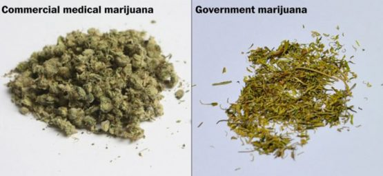 The Trouble with Studying Government-Provided Marijuana