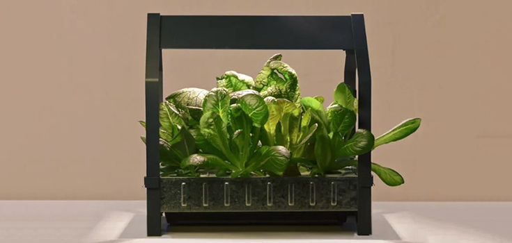 Ikea Brings Hydroponic Gardening To Your Kitchen