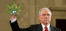 Jeff Sessions Wants to Crack Down on Medical Marijuana Users