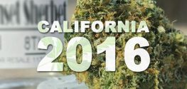 California Will Likely Strike it Rich if Marijuana is Legalized