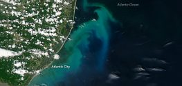 Why Do New Jersey Beaches Suddenly Look Like Tropical Waters?