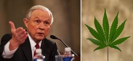 "Jeff Sessions: Pot ""Only Slightly Less Awful"" than Heroin"