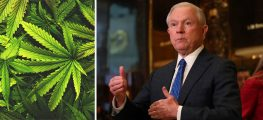 Major Marijuana Opponent Jeff Sessions was Named New U.S. Attorney General