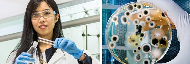 Scientists Make Breakthrough in the Fight Against Superbugs