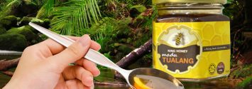 The Healing Power of Tualang Honey