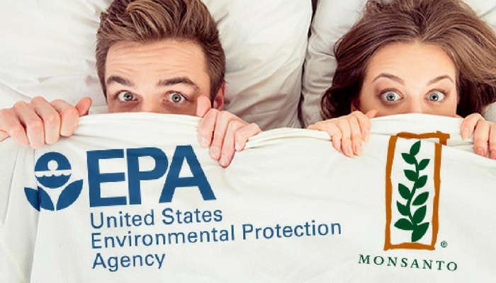EPA Official Accused of Helping Monsanto 'Kill' Glyphosate-Cancer Link
