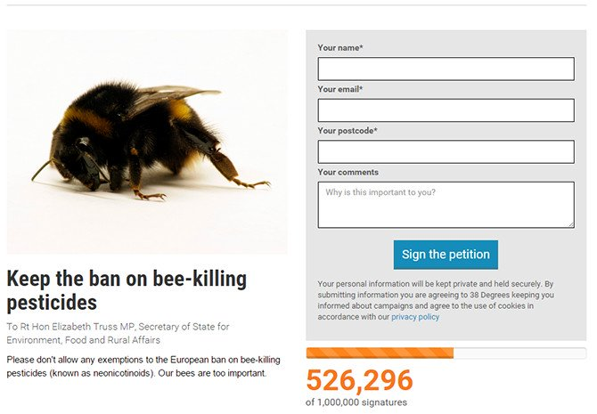 insect-bee-protest-petition-670