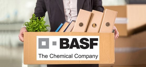 basf job loss