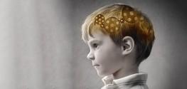 autism brain