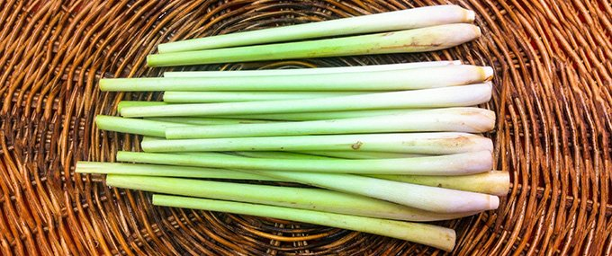 lemongrass-basket-680