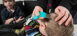 More Kids Are Getting Head Lice ... Because of Smartphones?
