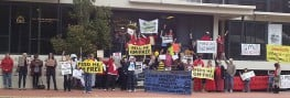 March Against Monsanto: Global Protest Movement Takes Down GMOs