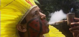 Native Americans Sue Postal Service over Seizure of 'Sacramental Cannabis'