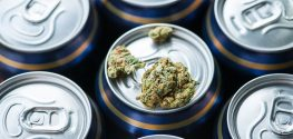 Americans are Ditching Beer for Cannabis in Huge Numbers