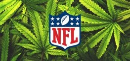 NFL Extends Offer to Work With Union to Study Medical Marijuana