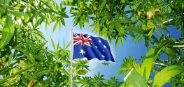 Australians Finally Close to Obtaining Access to Legal Cannabis