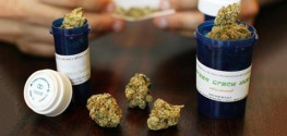 NY Governor Expedites Legal Pot for Critically Ill Patients