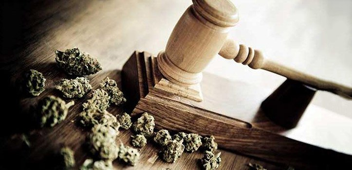 marijuana-drugs-court-735-350y