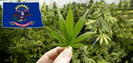 Medical Marijuana Gets the Green Light in North Dakota