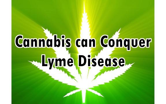 marijuana lyme disease