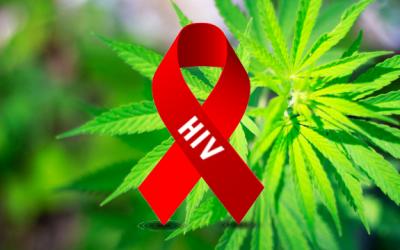 marijuana hiv