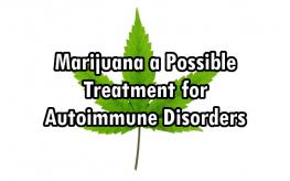 marijuana disease