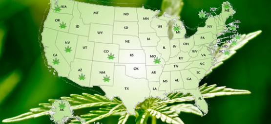 marijuana map