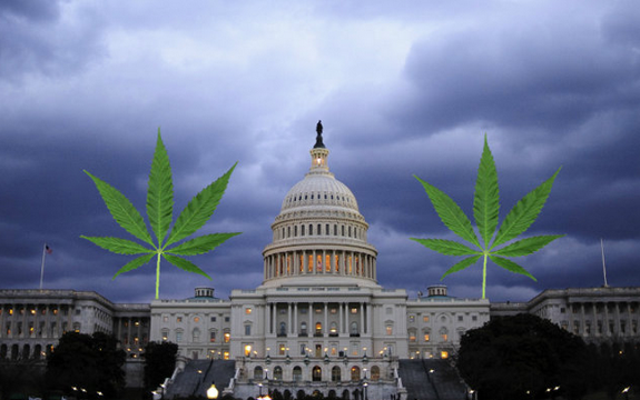 Washington D.C. marijuana
