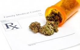 Medical Marijuana Becoming Blockbuster 'Anti-Cancer' Drug