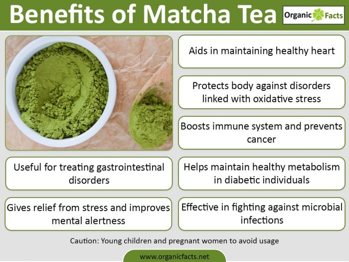 Matcha Green Tea Eliminates Cancer Cells by Stopping them from Refueling