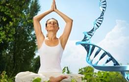 meditation DNA