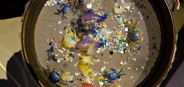 microbeads-plastic-735-350