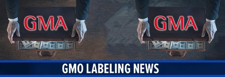 money-laundering-hidden-case-gma-gmo-735-254