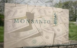 Big Win! Monsanto Reports $156 Million Loss in Q4 as Farmers Abandon GM Crops