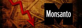 Flashback: Monsanto Profits Fell 15% on Weak Sales of GM Seed