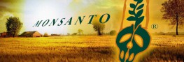 8 Reasons Monsanto is Defeating GMO Labeling Initiatives