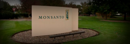 "Monsanto Now Billing Itself as a ""Sustainable Agriculture Company"""