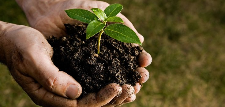 nature_dirt_hands_farm_agri_735_350