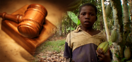 Child Slaves Receive Favorable Supreme Court Ruling Against Nestle, Others