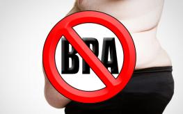 obesity bpa
