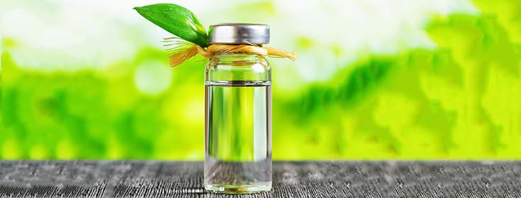 oil-essential-tea-tree
