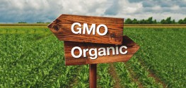 As Demand Skyrockets, Thousands of US Farms Are Going Organic