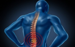 Study Finds Massage Leads to Lower Back Pain Relief